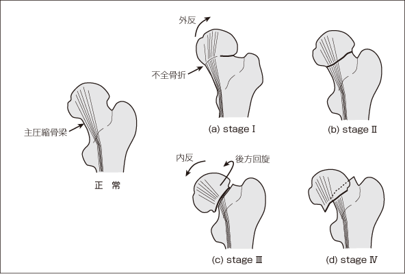 3Dモデリング|モデリング製作、設定資料や三面 …