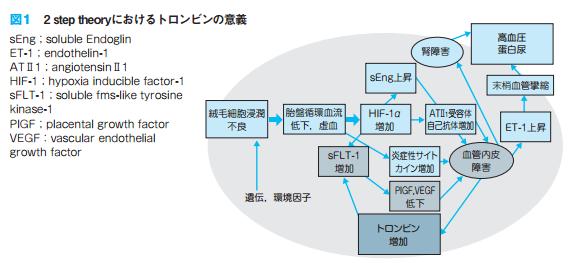 Ⅳ 妊婦管理 1.母体評価 CQ4 血液凝固・線溶系マーカーによる母体評価は?(妊娠高血圧症候群の診療指針)